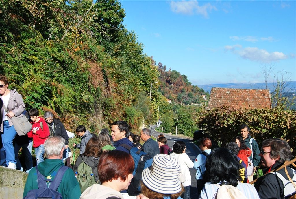 cam-castanhas-e-centeiros-27-10-2012-644