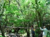 cam-miranda-corvo-11-maio-2013-622-105