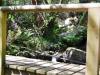 cam-miranda-corvo-11-maio-2013-622-56