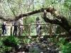 cam-miranda-corvo-11-maio-2013-622-62