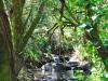 cam-miranda-corvo-11-maio-2013-622-90