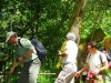 cam-miranda-corvo-11-maio-2013-774