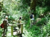 cam-miranda-corvo-11-maio-2013-902