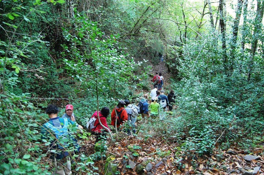 cam-gondramaz-13-10-2012-276-324