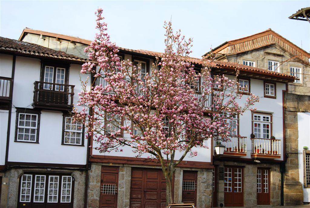 cam-guimaraes-fev-2012-843