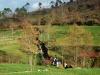 Cam.-no-Planalto-da-Serra-de-Montemuro-2-Fev-2013-148