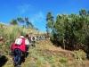 Cam.-no-Planalto-da-Serra-de-Montemuro-2Fev2013-108-9
