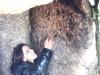 cam-s-aboboreira-23-mar-2013-975-41