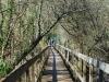 cam-ponte-de-lima-24-fev-2013-99