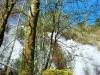 cam-sag-primavera-2013-00-110