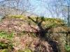 cam-sag-primavera-2013-00-142