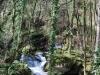 cam-sag-primavera-2013-00-181