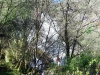 cam-sag-primavera-2013-00-27