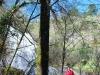 cam-sag-primavera-2013-00-37