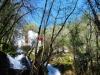 cam-sag-primavera-2013-00-42