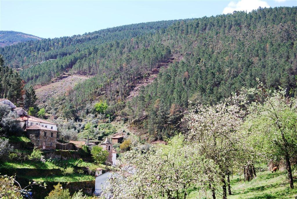 cam-benfeita-14-04-2012-1020