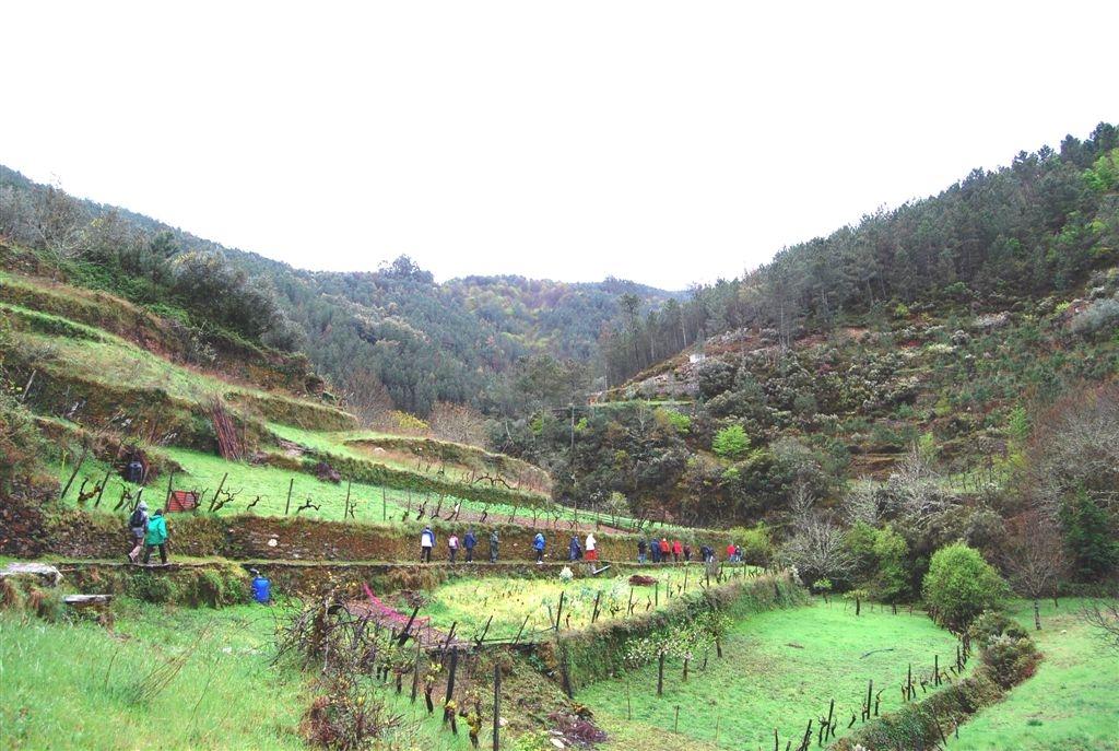 cam-benfeita-14-04-2012-648