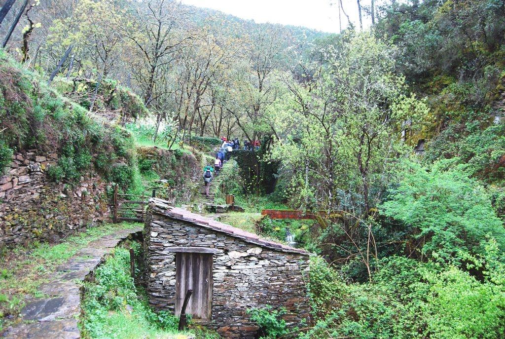 cam-benfeita-14-04-2012-654