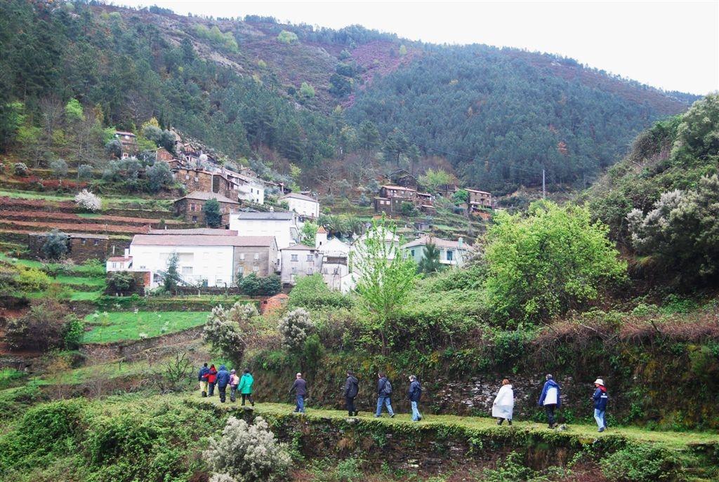 cam-benfeita-14-04-2012-831