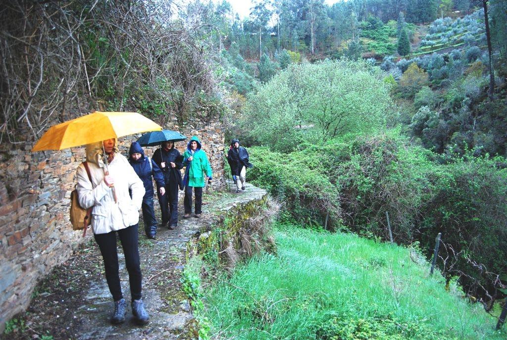 cam-benfeita-14-04-2012-905
