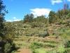 cam-benfeita-14-04-2012-1033