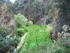 cam-benfeita-14-04-2012-1043