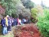 cam-benfeita-14-04-2012-733