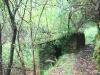 cam-benfeita-14-04-2012-737
