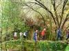 cam-benfeita-14-04-2012-747