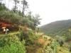 cam-benfeita-14-04-2012-817