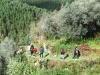 cam-benfeita-14-04-2012-891