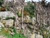 vias-romanas-09-mar-2013-684-121