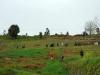 vias-romanas-09-mar-2013-684-42