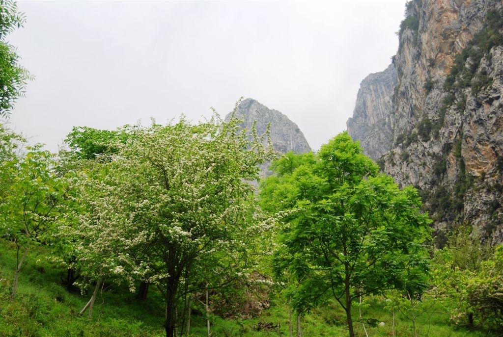 picos-da-europa-rota-de-cares-junho-2013-043-148