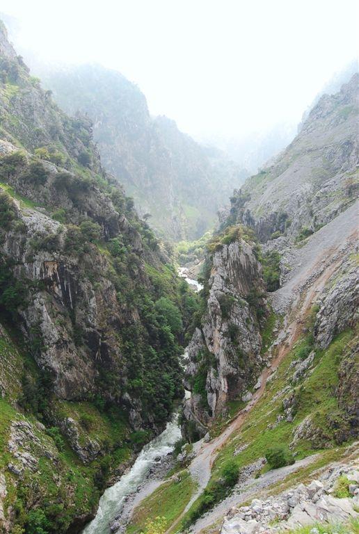 picos-da-europa-rota-de-cares-junho-2013-043-275