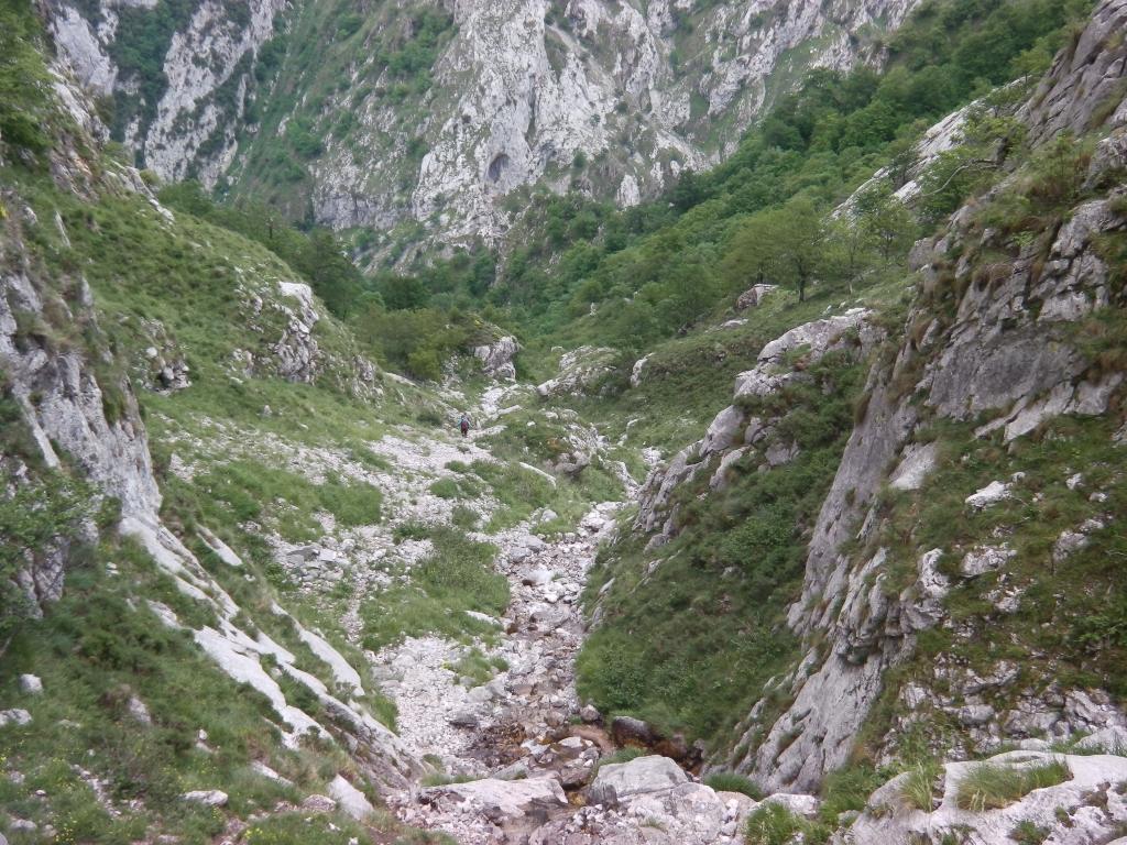IMGA0331
