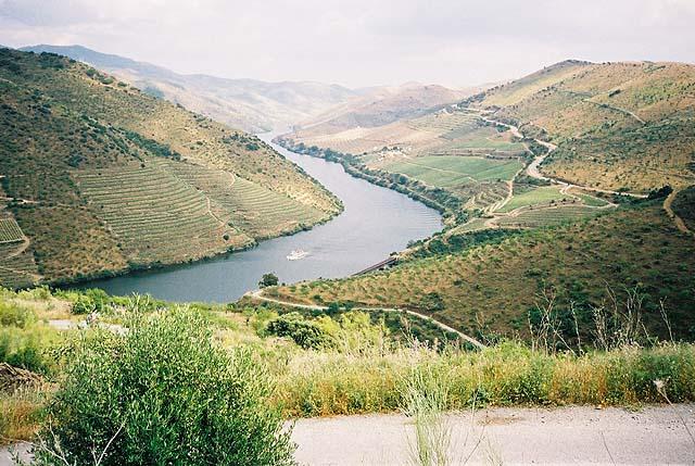 POCINHO - BARCA D'ALVA - 2004.jpg 4